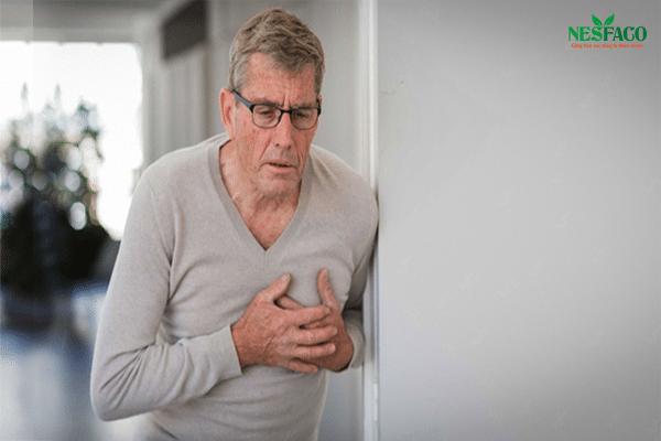 Cao huyết áp và bệnh tim mạch
